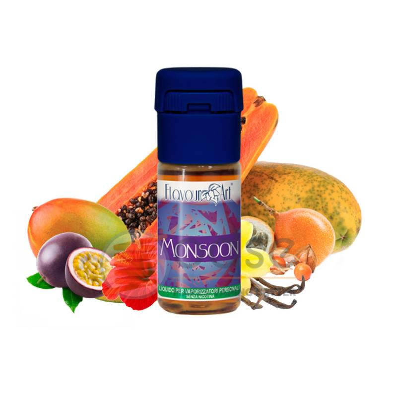 MONSOON LIQUIDO E-MOTIONS FLAVOURART 10 ML - PRONTI