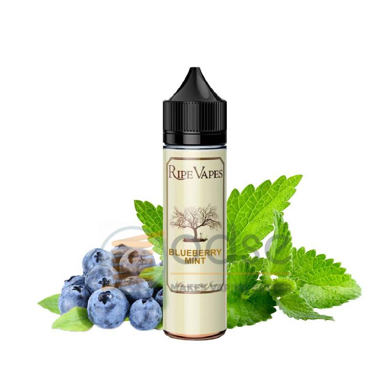 BLUEBERRY MINT SHOT RIPE VAPES - Fruttati